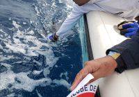 Campeonato de Pesca Aderbal Ramos da Silva 2020 ICSC