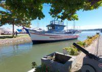Comodoros revitalizada Veleiros da Ilha